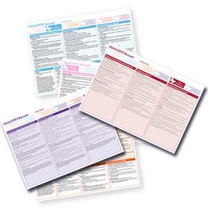 Butterfly Print EYFS Assessment Records